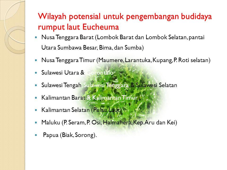 Wilayah potensial untuk pengembangan budidaya rumput laut Eucheuma  Nusa Tenggara Barat (Lombok Barat dan Lombok Selatan, pantai Utara Sumbawa Besar,