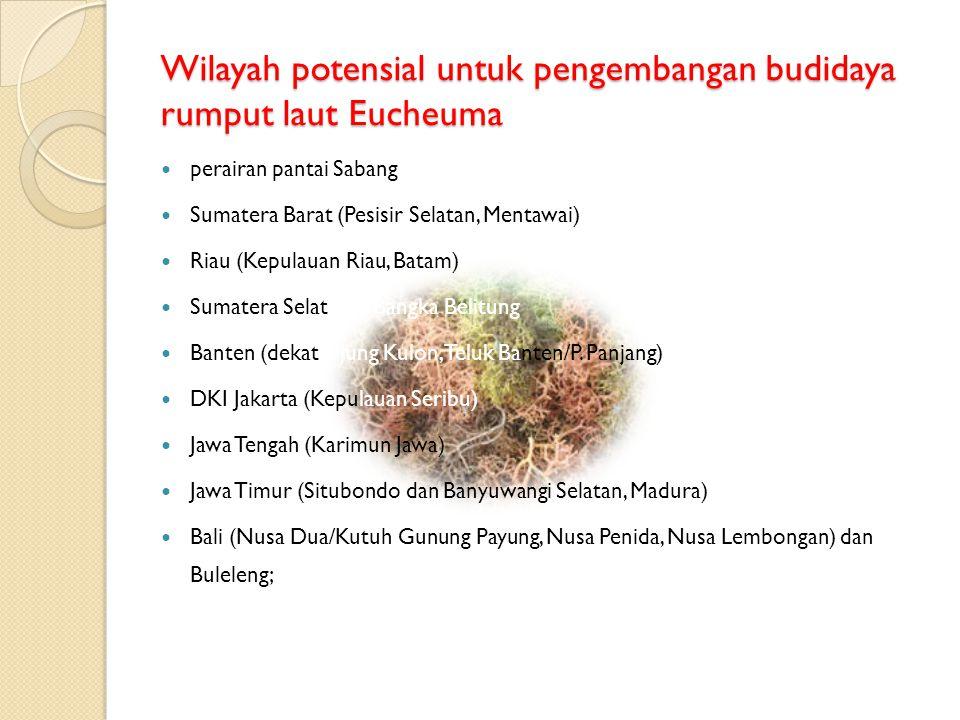 Wilayah potensial untuk pengembangan budidaya rumput laut Eucheuma  perairan pantai Sabang  Sumatera Barat (Pesisir Selatan, Mentawai)  Riau (Kepul