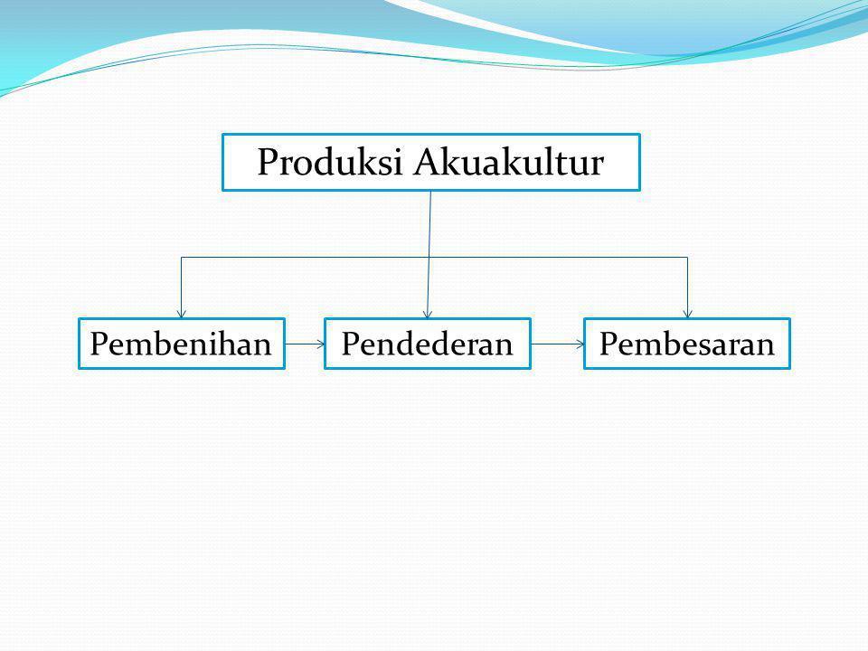 Produksi Akuakultur PembenihanPendederanPembesaran