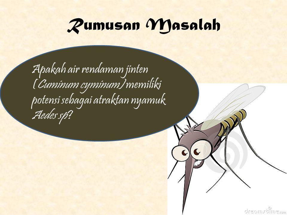 www.themegallery.com Company Logo Tujuan Umum Membuktikan potensi air rendaman jinten(Cuminum cyminum) sebagai atraktan nyamuk Aedes sp.