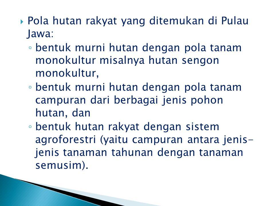  Pola hutan rakyat yang ditemukan di Pulau Jawa: ◦ bentuk murni hutan dengan pola tanam monokultur misalnya hutan sengon monokultur, ◦ bentuk murni h