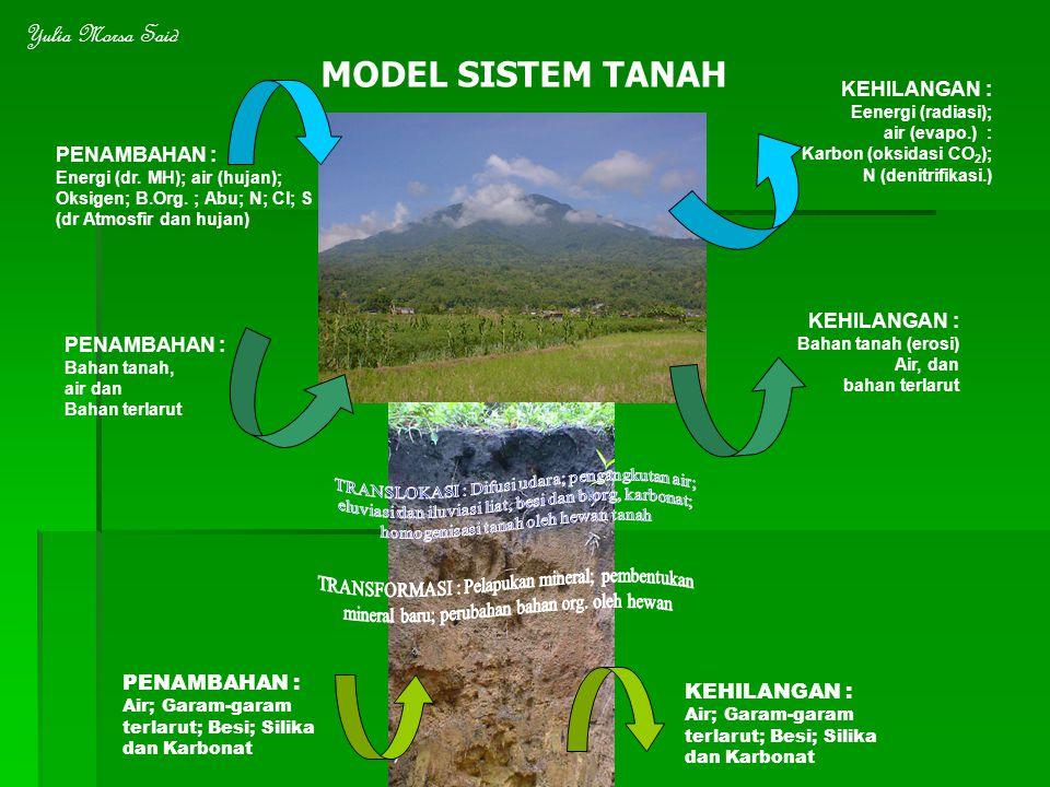 PENAMBAHAN : Energi (dr. MH); air (hujan); Oksigen; B.Org. ; Abu; N; Cl; S (dr Atmosfir dan hujan) KEHILANGAN : Eenergi (radiasi); air (evapo.) : Karb