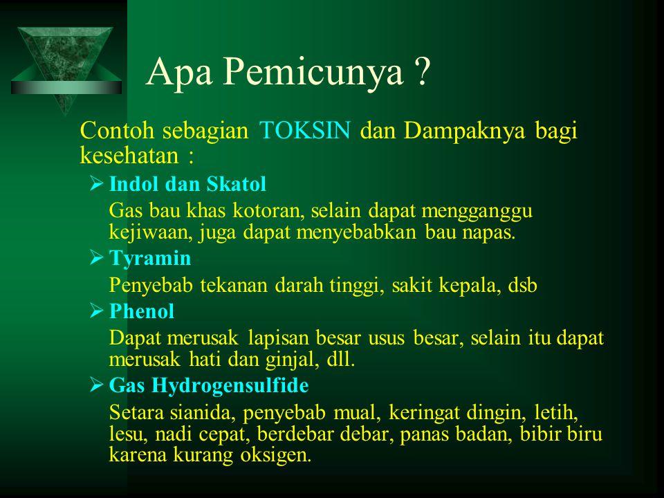 Apa Pemicunya ? Contoh sebagian TOKSIN dan Dampaknya bagi kesehatan :  Indol dan Skatol Gas bau khas kotoran, selain dapat mengganggu kejiwaan, juga