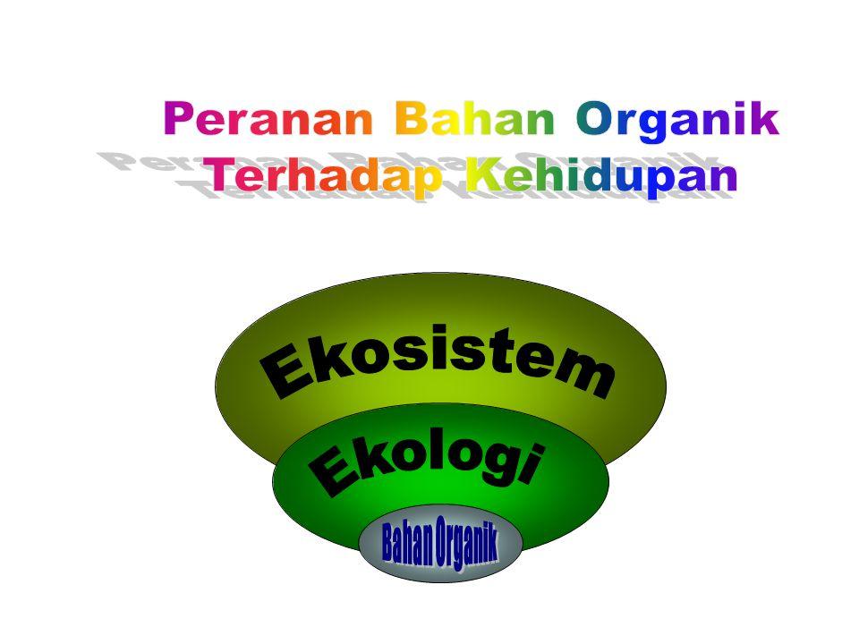 JENIS TANAMAN PESTISIDA ORGANIK (NABATI) Jenis TanamanCara PembuatanHama Yang dikendalikan 1.