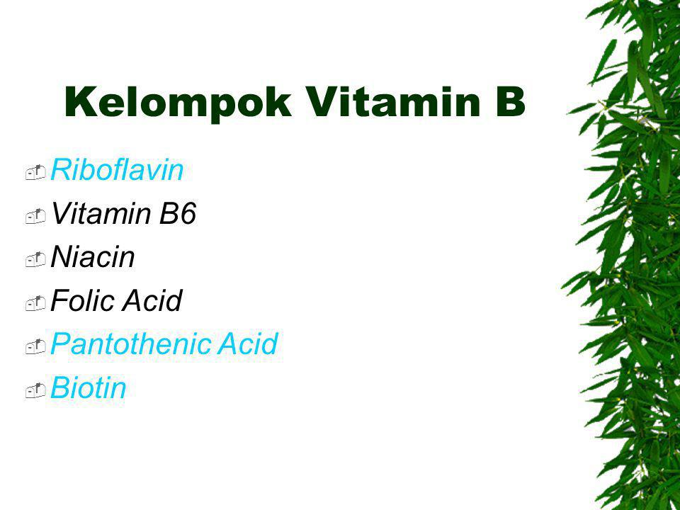 Kelompok Vitamin B  Riboflavin  Vitamin B6  Niacin  Folic Acid  Pantothenic Acid  Biotin