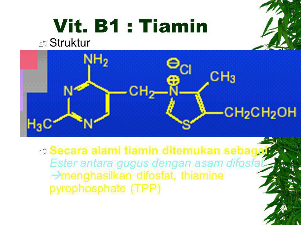 Vit. B1 : Tiamin  Struktur  Secara alami tiamin ditemukan sebagai: Ester antara gugus dengan asam difosfat  menghasilkan difosfat, thiamine pyropho