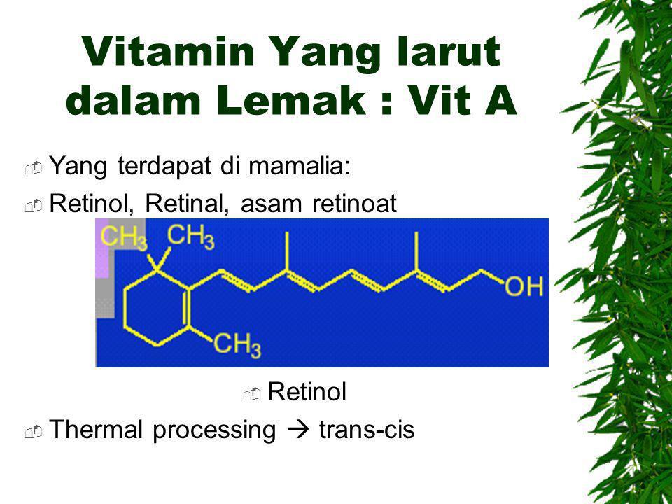 Vitamin Yang larut dalam Lemak : Vit A  Yang terdapat di mamalia:  Retinol, Retinal, asam retinoat  Retinol  Thermal processing  trans-cis