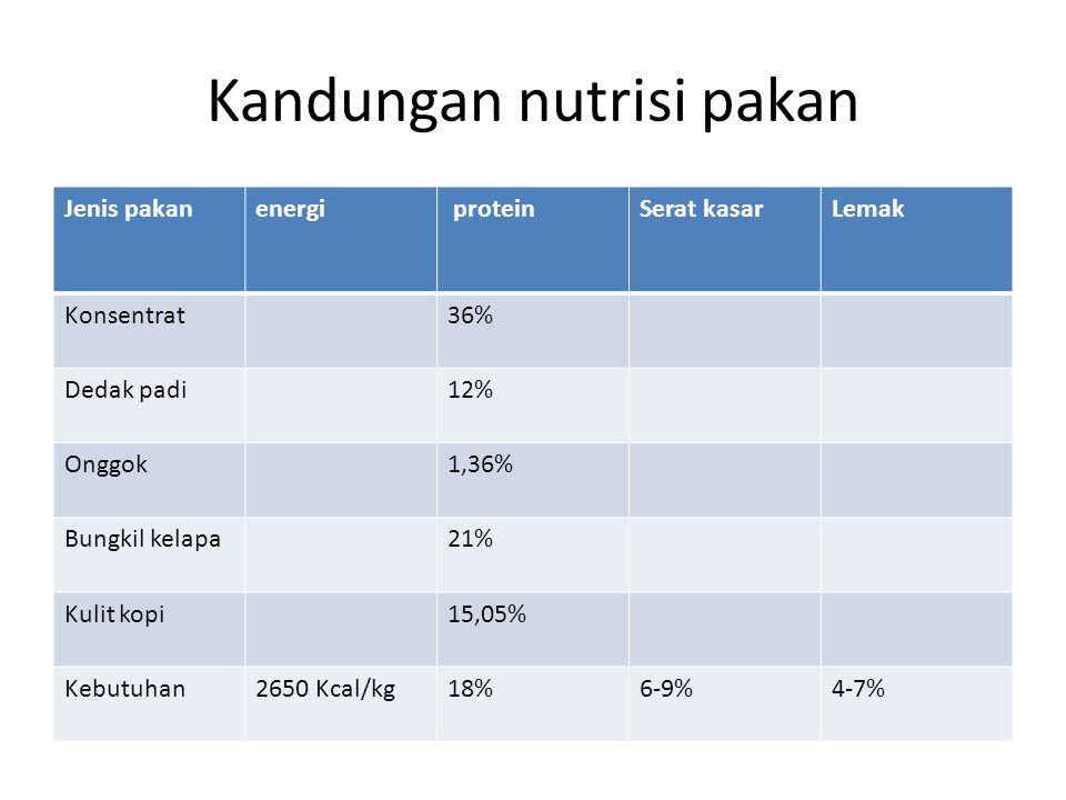 Kandungan nutrisi pakan Jenis pakanenergi proteinSerat kasarLemak Konsentrat36% Dedak padi12% Onggok1,36% Bungkil kelapa21% Kulit kopi15,05% Kebutuhan2650 Kcal/kg18%6-9%4-7%