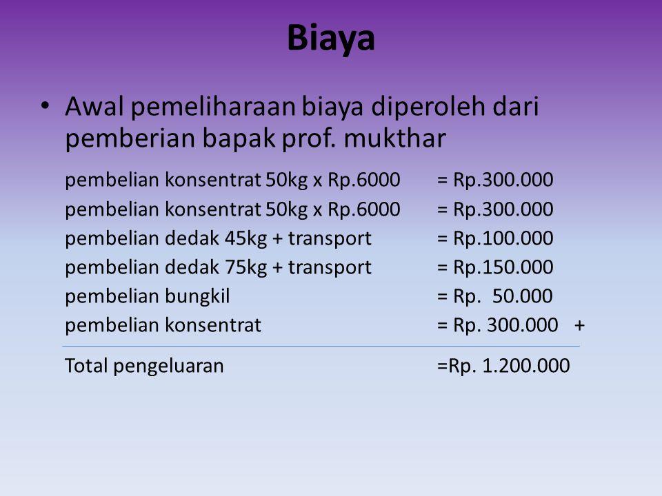 Biaya • Awal pemeliharaan biaya diperoleh dari pemberian bapak prof. mukthar pembelian konsentrat 50kg x Rp.6000 = Rp.300.000 pembelian dedak 45kg + t