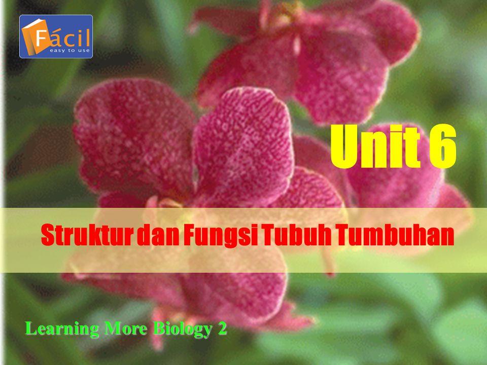 Struktur dan Fungsi Tubuh Tumbuhan Unit 6 Learning More Biology 2