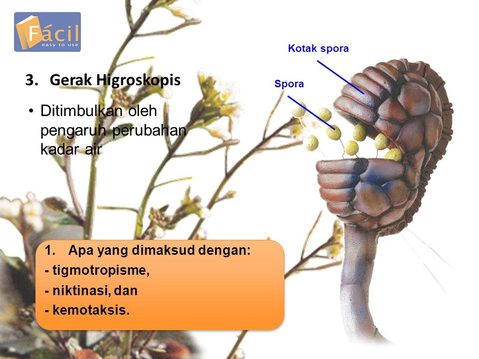 3.Gerak Higroskopis •Ditimbulkan oleh pengaruh perubahan kadar air Kotak spora Spora 1.Apa yang dimaksud dengan: - tigmotropisme, - niktinasi, dan - kemotaksis.