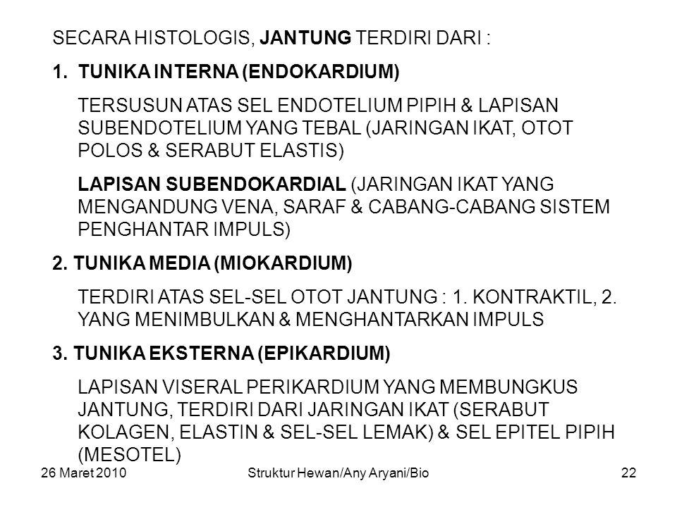 26 Maret 2010Struktur Hewan/Any Aryani/Bio22 SECARA HISTOLOGIS, JANTUNG TERDIRI DARI : 1.TUNIKA INTERNA (ENDOKARDIUM) TERSUSUN ATAS SEL ENDOTELIUM PIPIH & LAPISAN SUBENDOTELIUM YANG TEBAL (JARINGAN IKAT, OTOT POLOS & SERABUT ELASTIS) LAPISAN SUBENDOKARDIAL (JARINGAN IKAT YANG MENGANDUNG VENA, SARAF & CABANG-CABANG SISTEM PENGHANTAR IMPULS) 2.