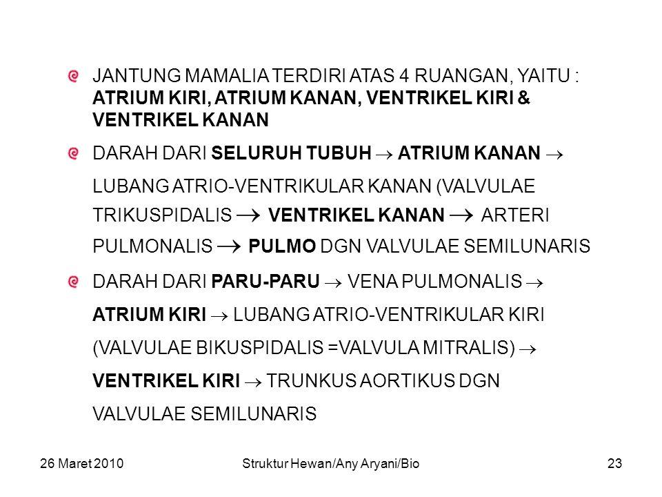 26 Maret 2010Struktur Hewan/Any Aryani/Bio23 JANTUNG MAMALIA TERDIRI ATAS 4 RUANGAN, YAITU : ATRIUM KIRI, ATRIUM KANAN, VENTRIKEL KIRI & VENTRIKEL KANAN DARAH DARI SELURUH TUBUH  ATRIUM KANAN  LUBANG ATRIO-VENTRIKULAR KANAN (VALVULAE TRIKUSPIDALIS  VENTRIKEL KANAN  ARTERI PULMONALIS  PULMO DGN VALVULAE SEMILUNARIS DARAH DARI PARU-PARU  VENA PULMONALIS  ATRIUM KIRI  LUBANG ATRIO-VENTRIKULAR KIRI (VALVULAE BIKUSPIDALIS =VALVULA MITRALIS)  VENTRIKEL KIRI  TRUNKUS AORTIKUS DGN VALVULAE SEMILUNARIS
