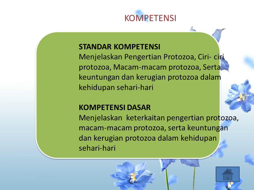KOMPETENSI STANDAR KOMPETENSI Menjelaskan Pengertian Protozoa, Ciri- ciri protozoa, Macam-macam protozoa, Serta keuntungan dan kerugian protozoa dalam kehidupan sehari-hari KOMPETENSI DASAR Menjelaskan keterkaitan pengertian protozoa, macam-macam protozoa, serta keuntungan dan kerugian protozoa dalam kehidupan sehari-hari