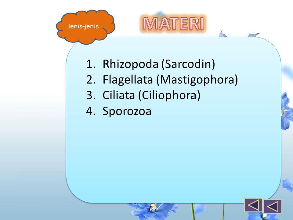 1.Rhizopoda (Sarcodin) 2.Flagellata (Mastigophora) 3.Ciliata (Ciliophora) 4.Sporozoa Jenis-jenis