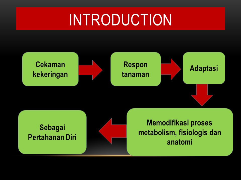 INTRODUCTION Respon tanaman Memodifikasi proses metabolism, fisiologis dan anatomi Sebagai Pertahanan Diri Cekaman kekeringan Adaptasi
