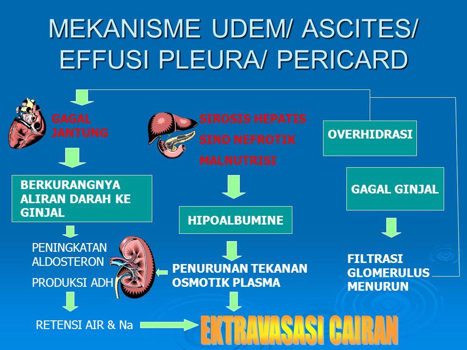 MEKANISME UDEM/ ASCITES/ EFFUSI PLEURA/ PERICARD GAGAL JANTUNG PENINGKATAN ALDOSTERON PRODUKSI ADH SIROSIS HEPATIS SIND NEFROTIK MALNUTRISI HIPOALBUMINE BERKURANGNYA ALIRAN DARAH KE GINJAL OVERHIDRASI PENURUNAN TEKANAN OSMOTIK PLASMA RETENSI AIR & Na GAGAL GINJAL FILTRASI GLOMERULUS MENURUN