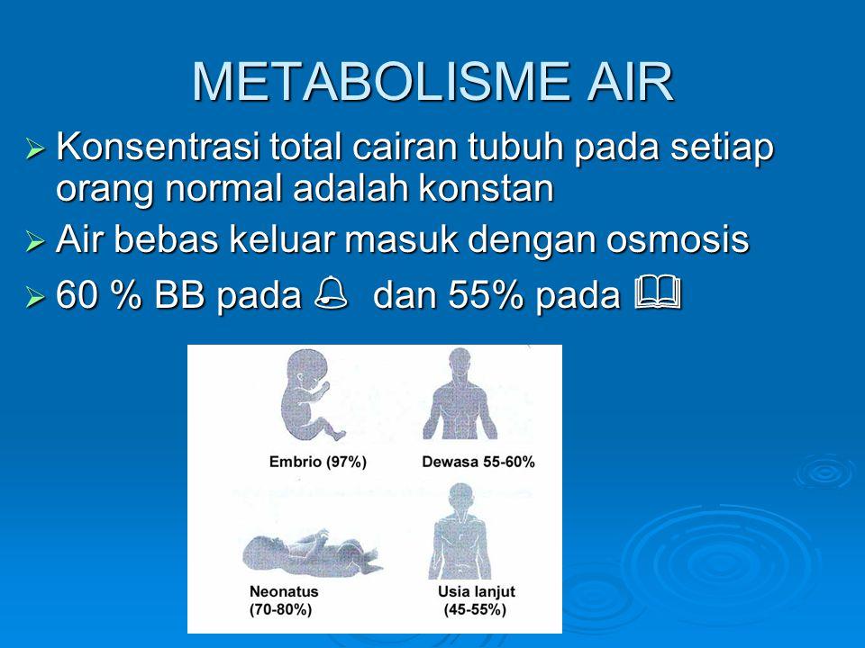 Estimasi kebutuhan air harian • •Berdasarkan laju metabolisme 80 - 110 ml/100 kcal • •Berdasarkan berat: 30 - 40 ml/kg/hari • •Berdasarkan luas permukaan tubuh : 1.5 L/m2/hari