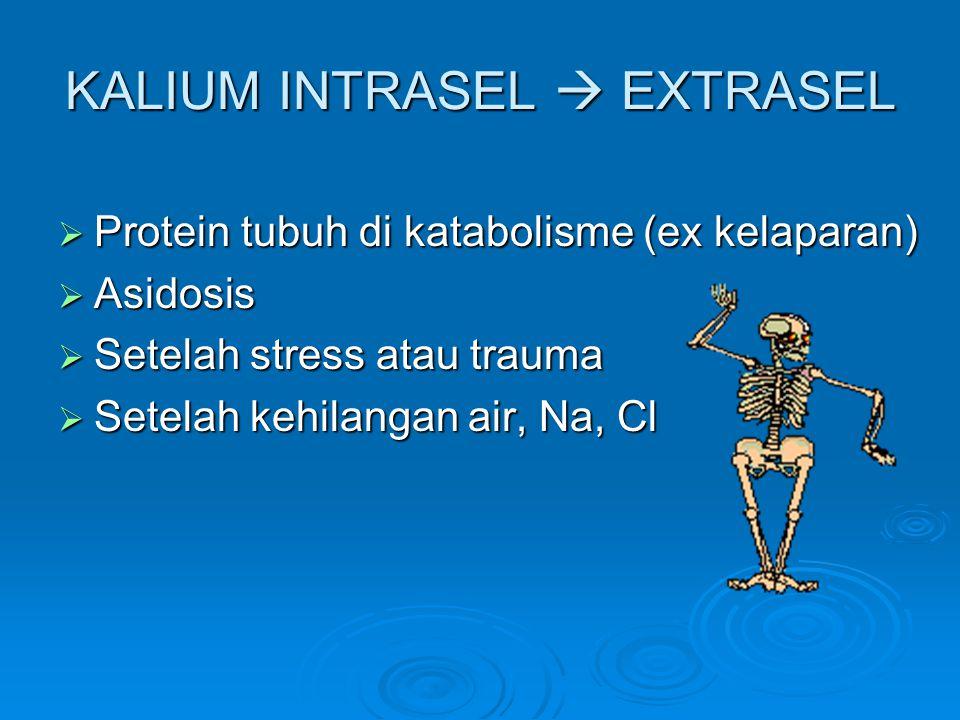 KALIUM INTRASEL  EXTRASEL  Protein tubuh di katabolisme (ex kelaparan)  Asidosis  Setelah stress atau trauma  Setelah kehilangan air, Na, Cl