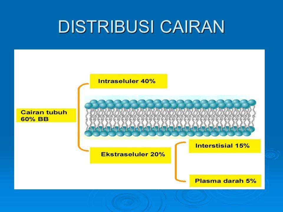 Cairan intraselular (CIS)  Lokasi: Perbedaan antara CIS dan CES jelas dan mudah dipahami, keduanya dipisahkan oleh membran sel.