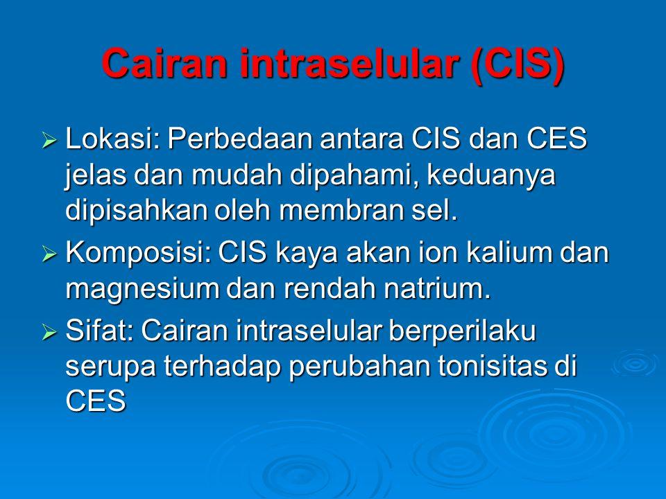 Cairan ekstraselular (CES)  CES dibagi lagi menjadi beberapa kompartemen yang lebih kecil yakni :  plasma  cairan interstisial  cairan tulang dan jaringan ikat padat  cairan transelular