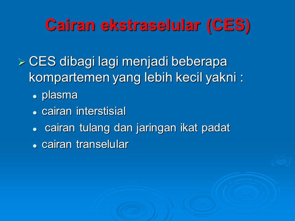 Cairan ekstraselular (CES)  CES dibagi lagi menjadi beberapa kompartemen yang lebih kecil yakni :  plasma  cairan interstisial  cairan tulang dan