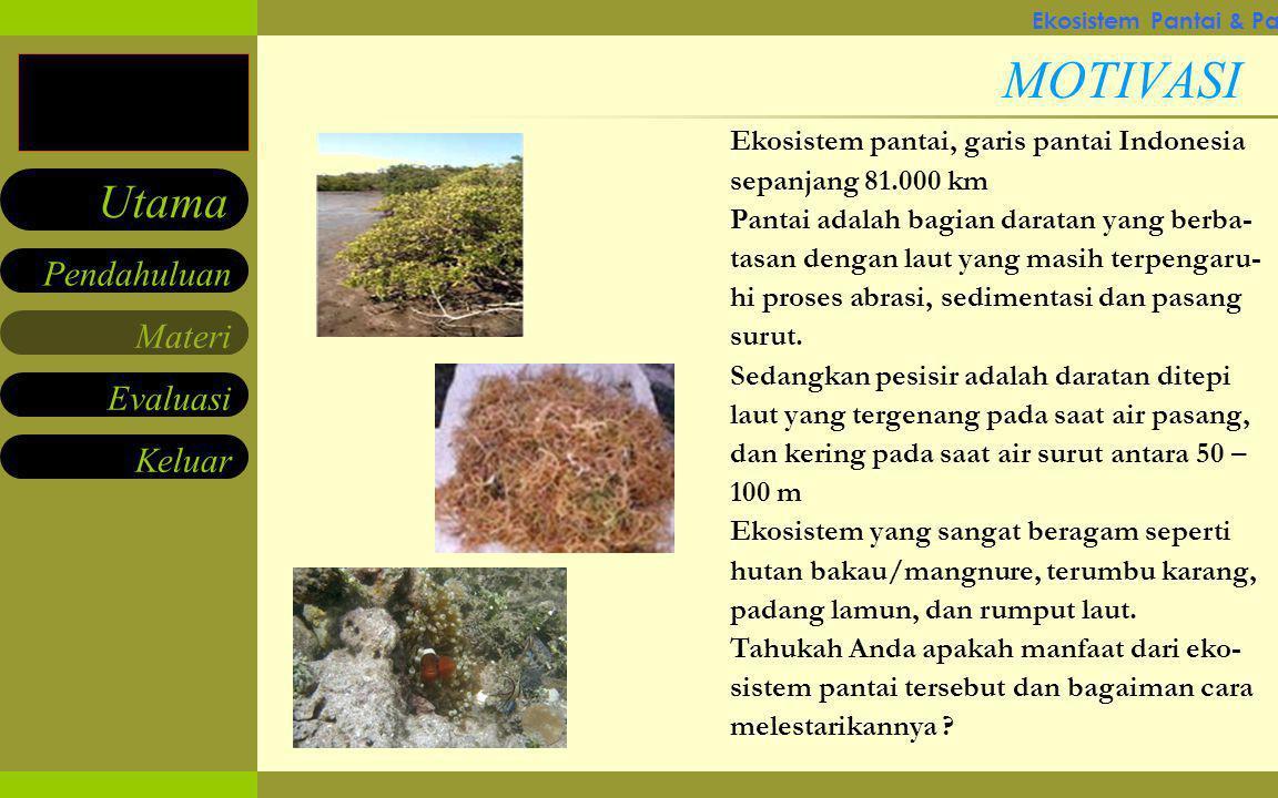 Materi Keluar Pendahuluan Utama Evaluasi PETA INDONESIA Pernahkah Anda berfikir, berapa km panjang pantai di Indonesia .