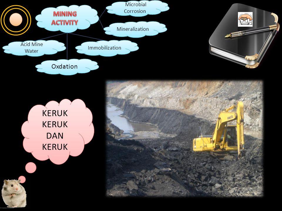 KERUK DAN KERUK DAN KERUK Oxdation Immobilization Mineralization Microbial Corrosion Microbial Corrosion Acid Mine Water Acid Mine Water