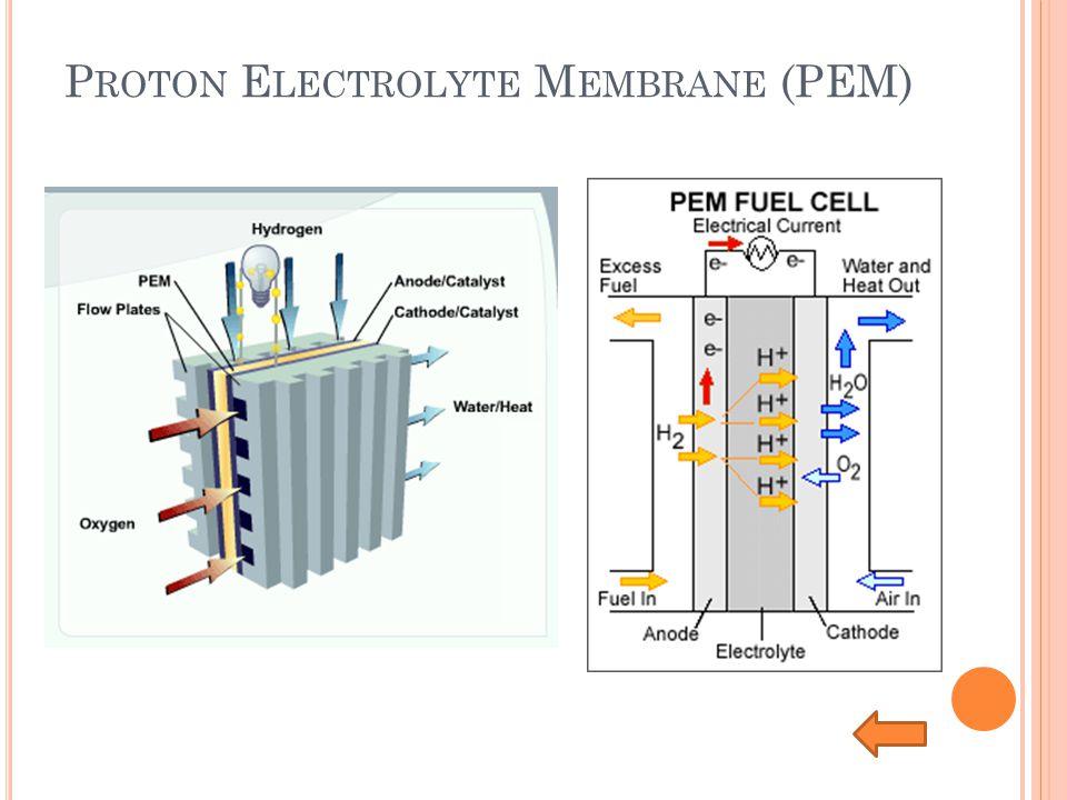 P ROTON E LECTROLYTE M EMBRANE (PEM)