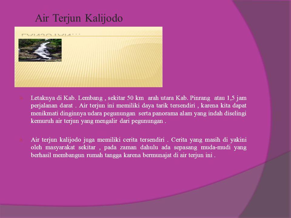 PULAU KAMARANG Salah satu objek wisata bahari yang terletak di Kec. Suppa. Sekitar 30 km arah selatan kota Pinrang. Kawasan ini di apit laut sehingga