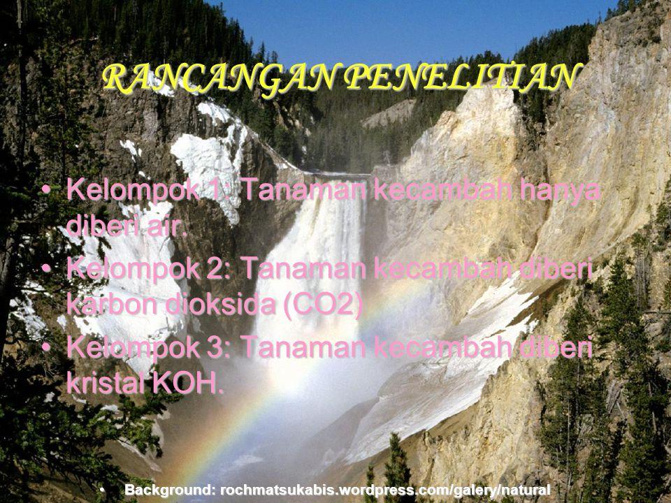 Background:rochmatsukabis.word press.com RANCANGAN PENELITIAN •K•K•K•Kelompok 1: Tanaman kecambah hanya diberi air. •K•K•K•Kelompok 2: Tanaman kecamba