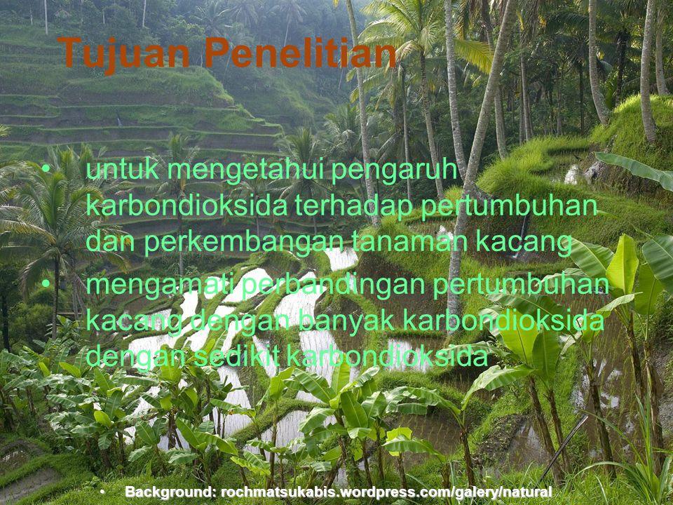 Background:rochmatsukabis.word press.com Tujuan Penelitian •untuk mengetahui pengaruh karbondioksida terhadap pertumbuhan dan perkembangan tanaman kac