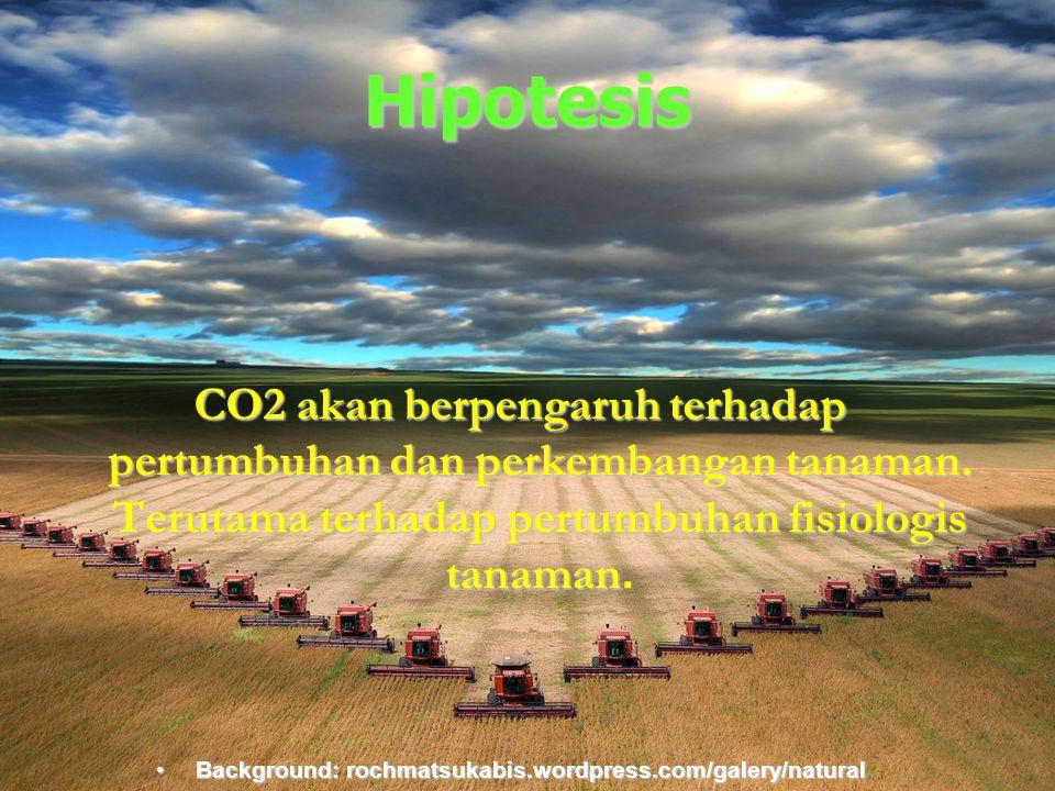 Background:rochmatsukabis.word press.com Hipotesis CO2 akan berpengaruh terhadap pertumbuhan dan perkembangan tanaman. Terutama terhadap pertumbuhan f