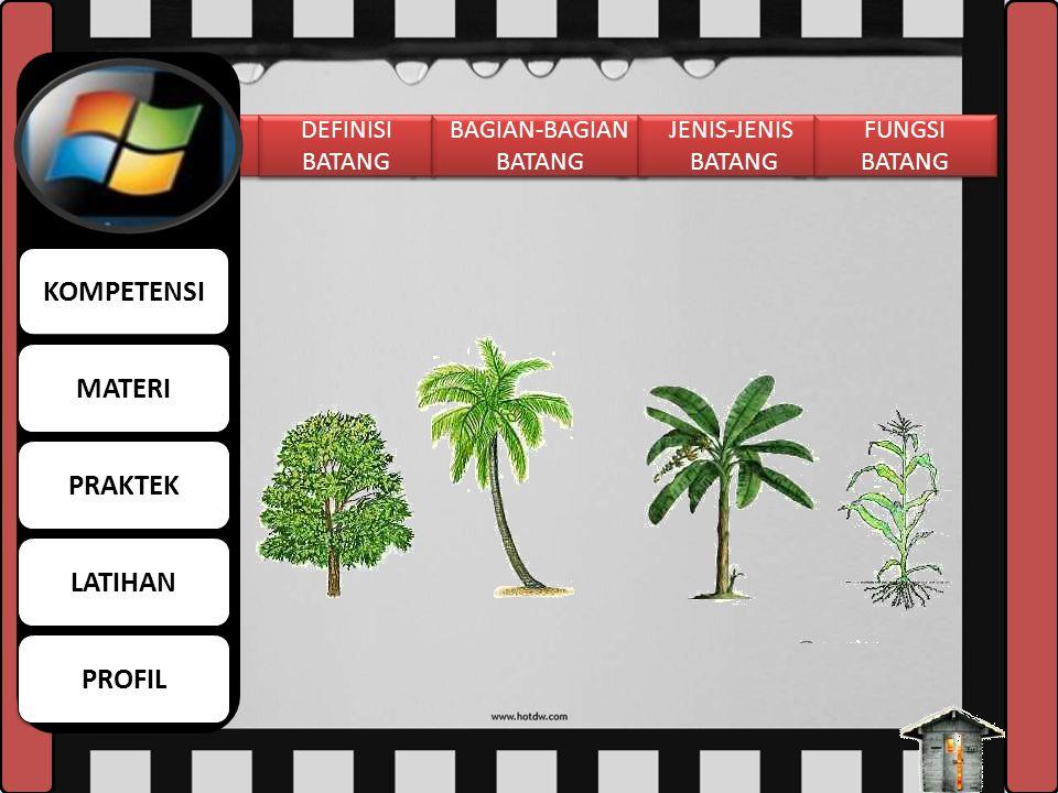 FUNGSI AKAR 1. Menguatkan berdirinya tumbuhan pada tempat tumbuhnya. 2. Menyerap air dan garam-garam mineral dari dalam tanah. 3. Menyimpan cadangan m