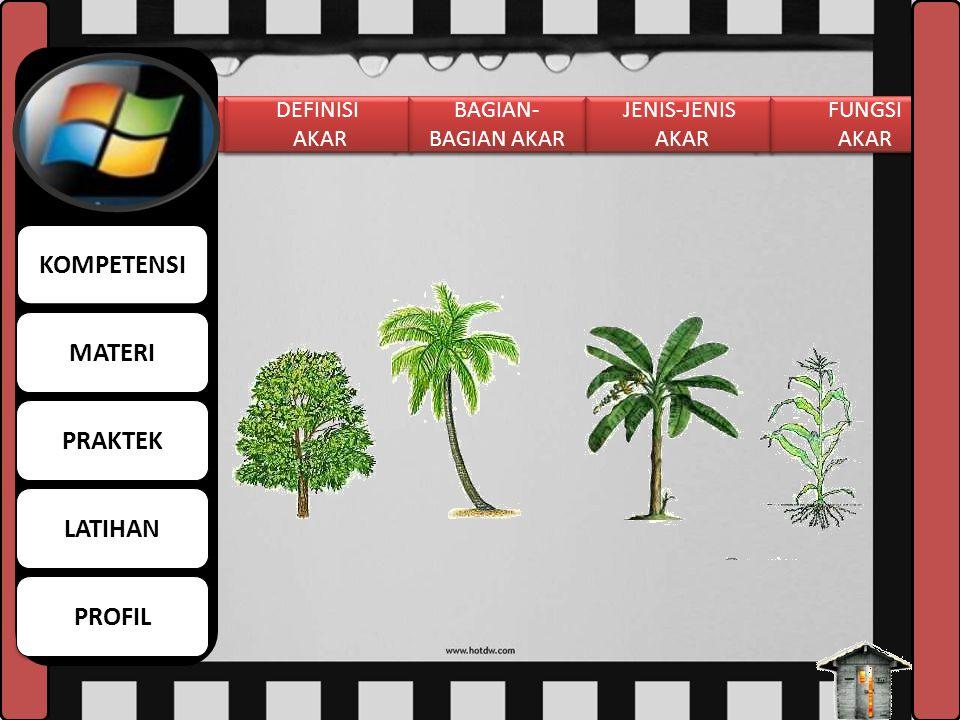 TUJUAN Melalui pengamatan dan percobaan siswa dapat: 1. Mengidentifikasi jenis-jenis akar pada tumbuhan 2. Menjelaskan fungsi akar dengan tepat 3. Men