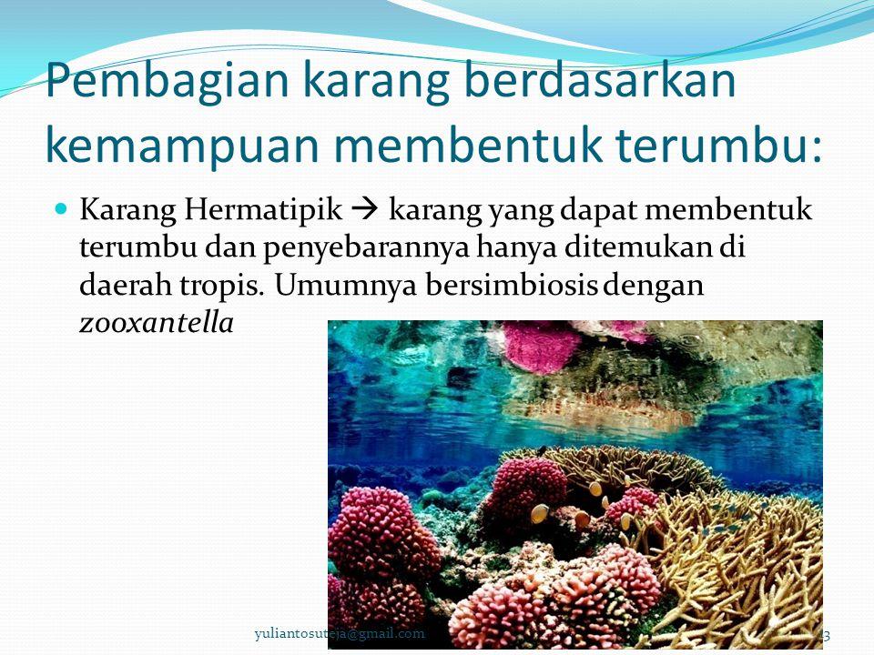 Pembagian karang berdasarkan kemampuan membentuk terumbu:  Karang Hermatipik  karang yang dapat membentuk terumbu dan penyebarannya hanya ditemukan