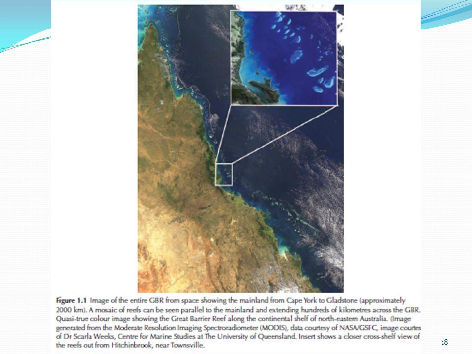  Atol (atolls)  terumbu karang berbentuk melingkar seperti cincin yang muncul dari perairan yang dalam dan mengelilingi sebuah lagoon 19yuliantosuteja@gmail.com