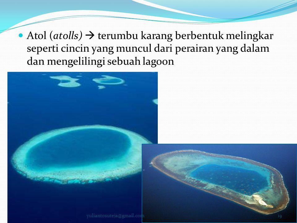  Atol (atolls)  terumbu karang berbentuk melingkar seperti cincin yang muncul dari perairan yang dalam dan mengelilingi sebuah lagoon 19yuliantosute