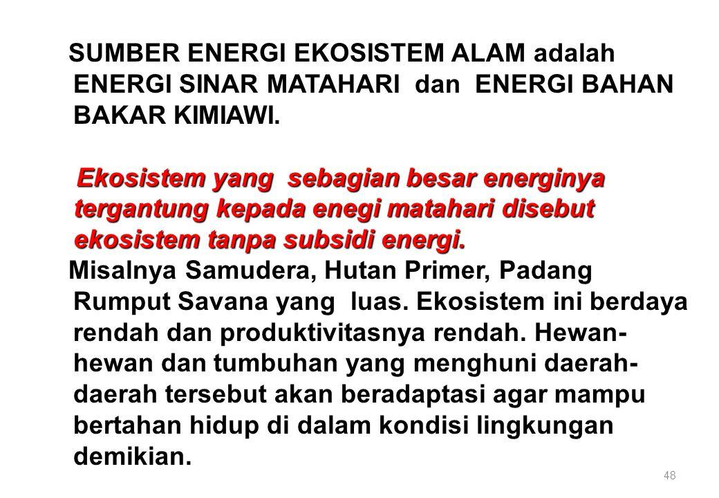 48 SUMBER ENERGI EKOSISTEM ALAM adalah ENERGI SINAR MATAHARI dan ENERGI BAHAN BAKAR KIMIAWI. Ekosistem yang sebagian besar energinya tergantung kepada