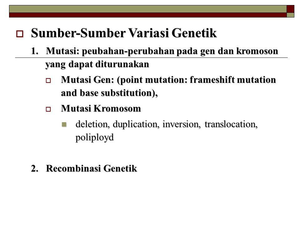  Sumber-Sumber Variasi Genetik 1. Mutasi: peubahan-perubahan pada gen dan kromoson yang dapat diturunakan  Mutasi Gen: (point mutation: frameshift m