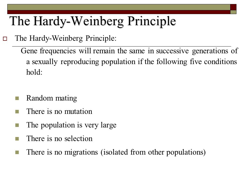 The Hardy-Weinberg Principle  The Hardy-Weinberg Principle: Gene frequencies will remain the same in successive generations of a sexually reproducing