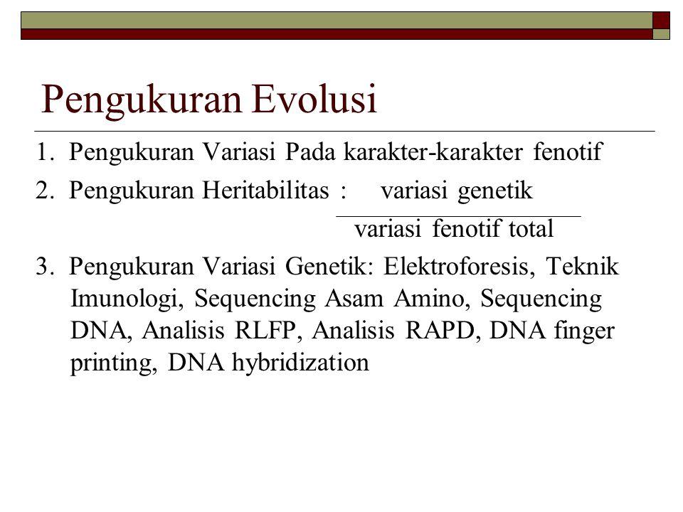 Pengukuran Evolusi 1. Pengukuran Variasi Pada karakter-karakter fenotif 2. Pengukuran Heritabilitas : variasi genetik variasi fenotif total 3. Penguku