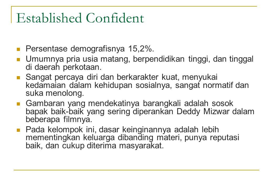 Established Confident  Persentase demografisnya 15,2%.  Umumnya pria usia matang, berpendidikan tinggi, dan tinggal di daerah perkotaan.  Sangat pe