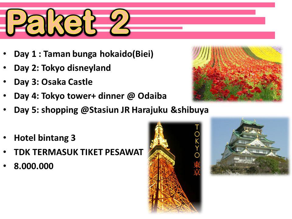 • Day 1: Panoramic Tokyo Day Tour – Meiji Shrine, Asakusa Temple and Tokyo Bay Cruise • Day 2: Tokyo disneyland • Day 3: Ueno park (Taman bunga sakura) • Day 4: Osaka Castle • Day 5: Tokyo tower+ dinner @ Odaiba • Day 6: shopping @Stasiun JR Harajuku &shibuya • Hotel bintang 5 • TDK TERMASUK TIKET PESAWAT • 15.000.000