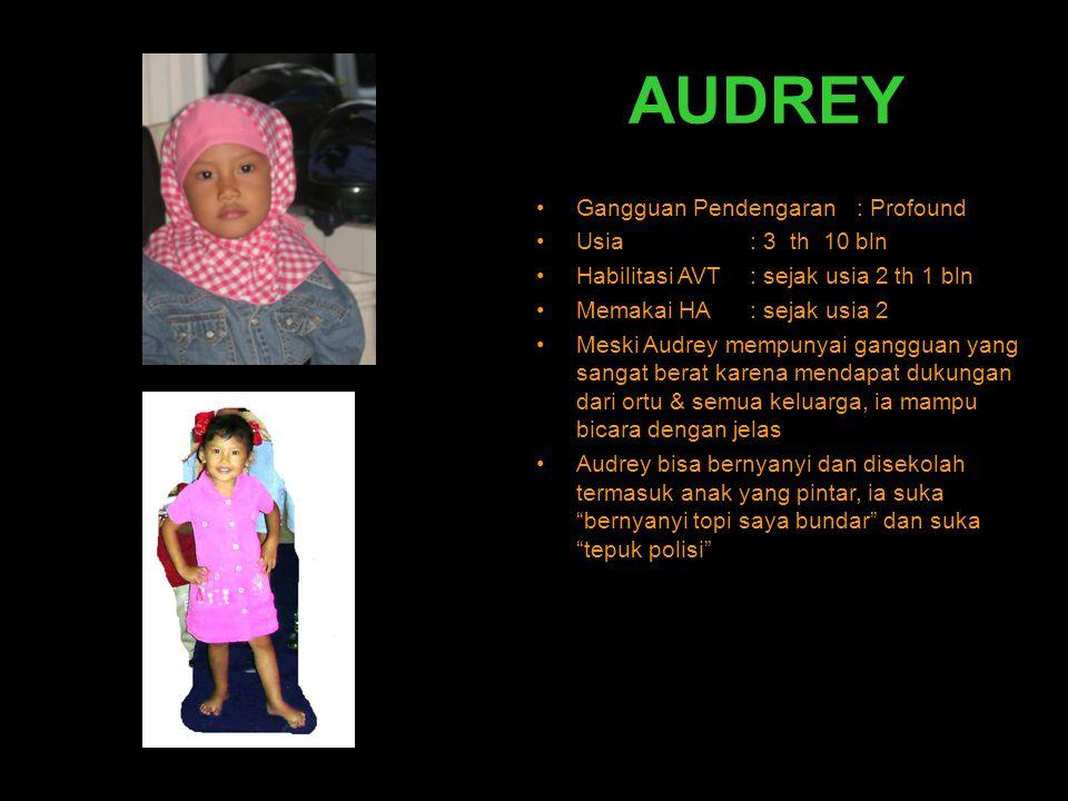 AUDREY •Gangguan Pendengaran : Profound •Usia: 3 th 10 bln •Habilitasi AVT: sejak usia 2 th 1 bln •Memakai HA: sejak usia 2 •Meski Audrey mempunyai ga