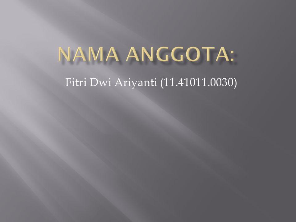 Fitri Dwi Ariyanti (11.41011.0030)