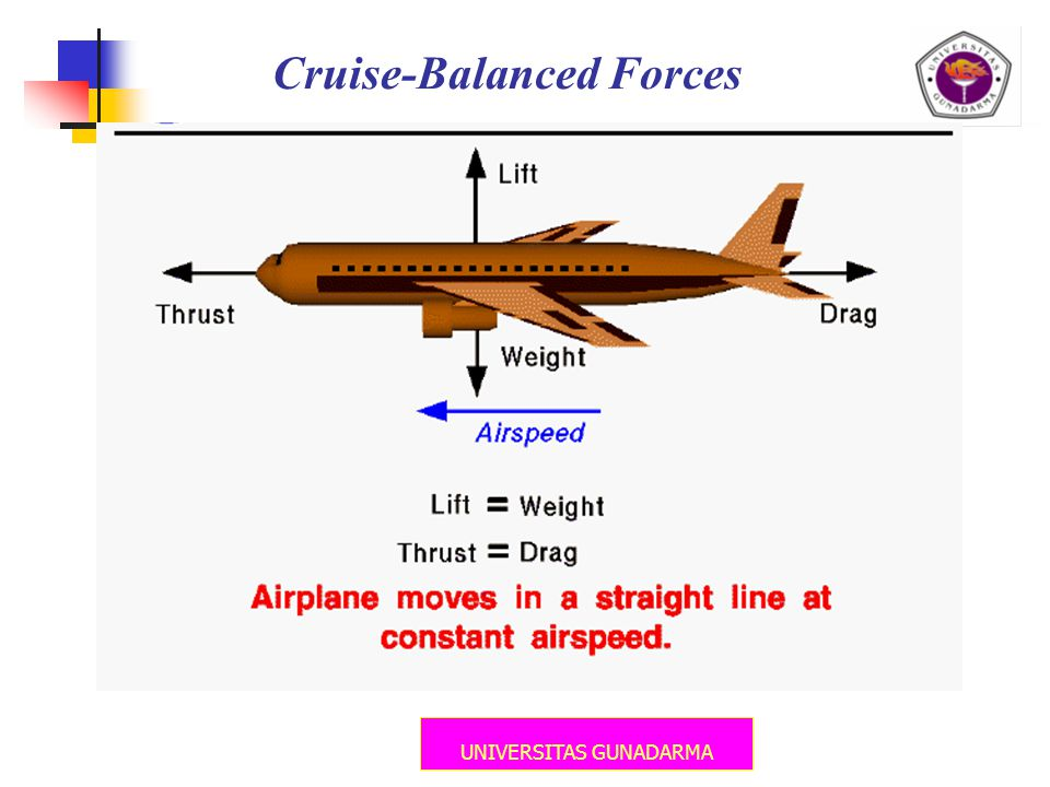 UNIVERSITAS GUNADARMA Cruise-Balanced Forces