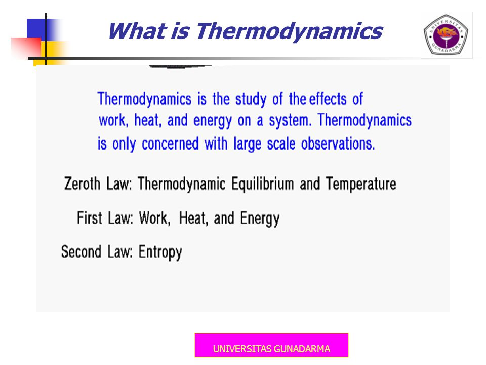 UNIVERSITAS GUNADARMA What is Thermodynamics