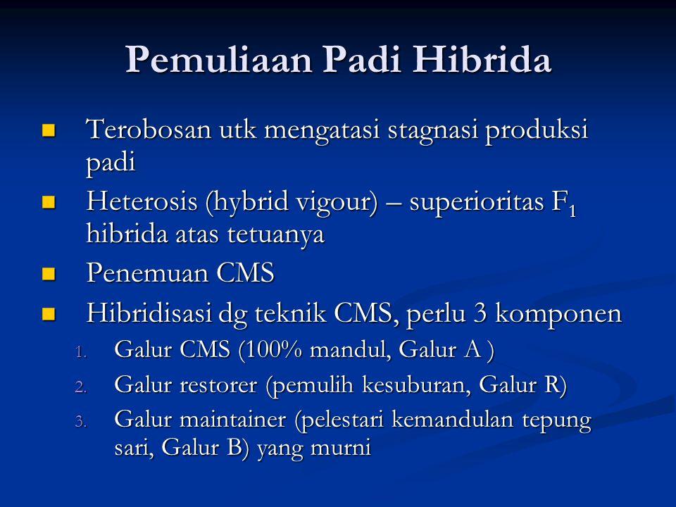 Pemuliaan Padi Hibrida  Terobosan utk mengatasi stagnasi produksi padi  Heterosis (hybrid vigour) – superioritas F 1 hibrida atas tetuanya  Penemua