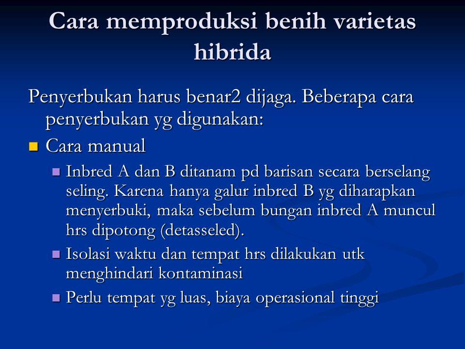 Cara memproduksi benih varietas hibrida Penyerbukan harus benar2 dijaga. Beberapa cara penyerbukan yg digunakan:  Cara manual  Inbred A dan B ditana